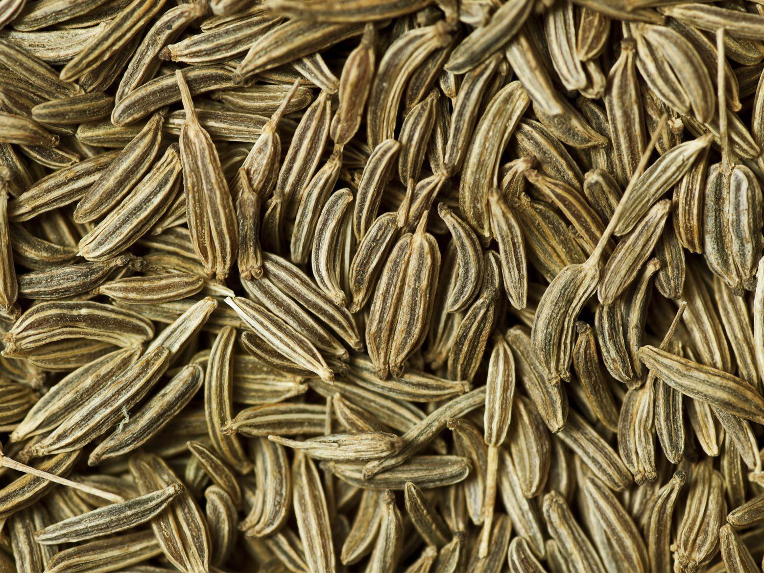 Kümmel Samen